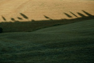 Colline in ombra