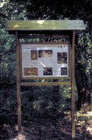 La riserva di Castel Cerreto